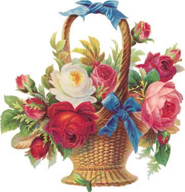 цветы для учителей