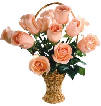 розы в корзине - цветы учителю