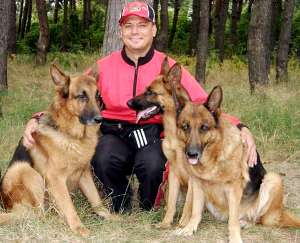 собаки немецкие овчарки - что подарить мужчине