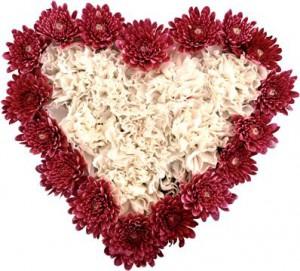serdce-iz-cvetov-vyrazit-cvetami-lyubov