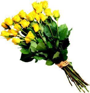 желтые розы - выразить цветами негатив на свадьбе