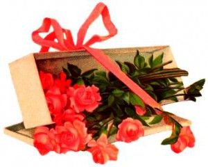 cvety-tem-kto-rodilis-11-yanvarya