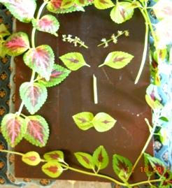 конкурсы для мужчин - портрет жены из листьев колеуса