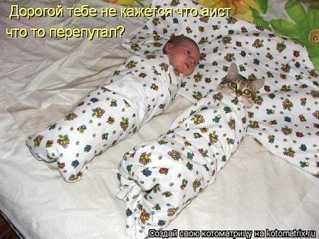 Шуточная инструкция молодым родителям - как пеленать ребенка и кота))